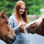 horse training young adult