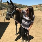equine therapy for young adult